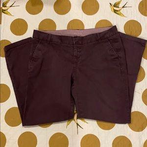 Caslon Slate Colored Ankle Pants